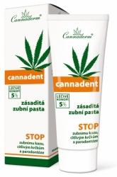 Cannaderm Cannadent zásaditá zubní pasta 75g